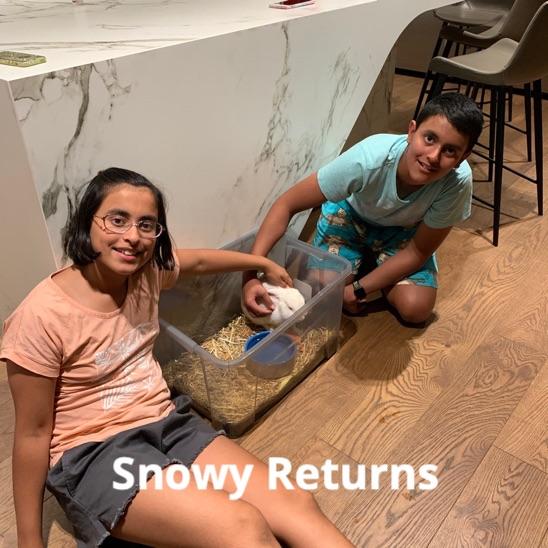 snowy returns